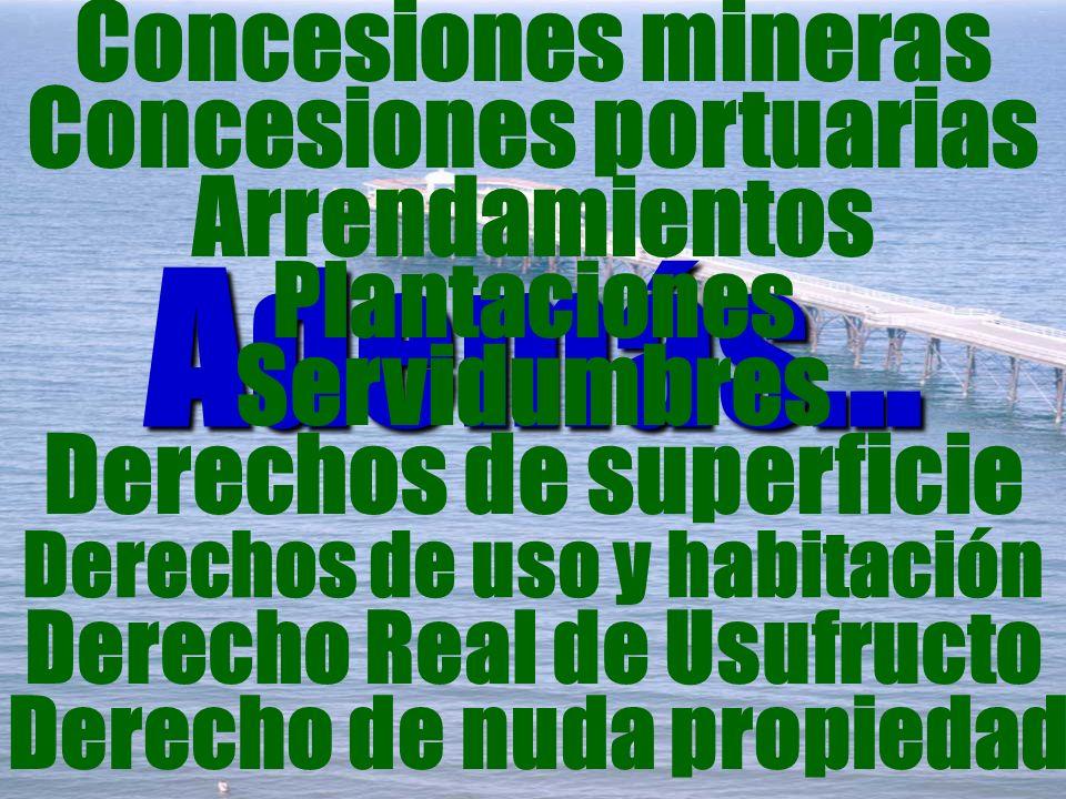 Además... Concesiones mineras Plantaciones Derechos de uso y habitación Servidumbres Derecho Real de Usufructo Concesiones portuarias Derechos de supe