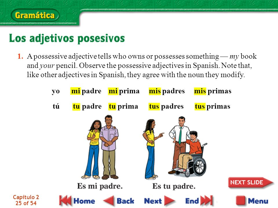Capítulo 2 25 of 54 1. A possessive adjective tells who owns or possesses something my book and your pencil. Observe the possessive adjectives in Span