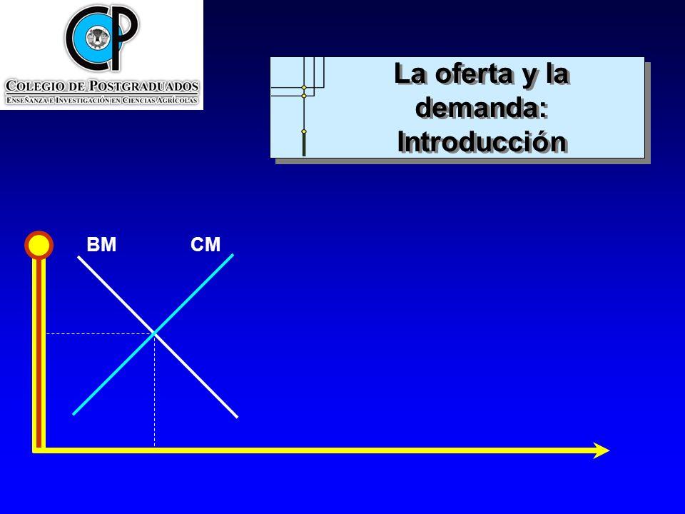 BMCM Los compradores y los vendedores en los mercados La curva de demanda: Pendiente negativa ¿Por qué compran los consumidores una cantidad mayor cuando los precios son más bajos y viceversa.