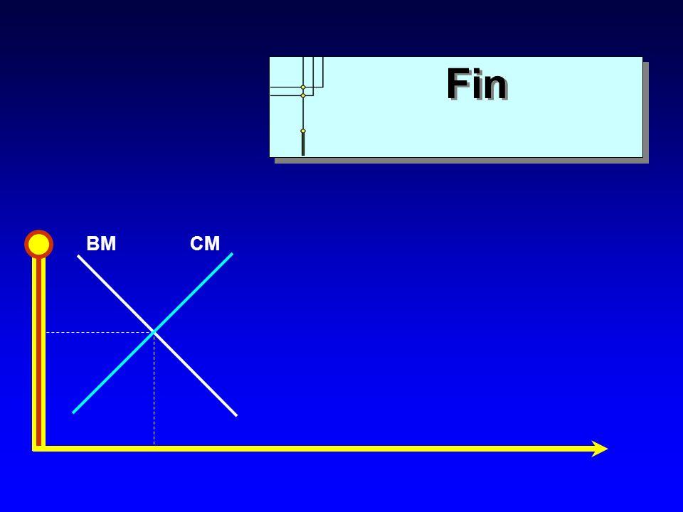 BMCM Fin