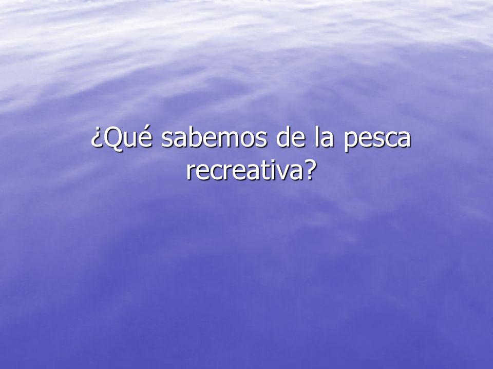 DATOS España TRAGSA LicenciasPortamarresbuques Cataluña20.1514530.49247.891 Baleares35.1906819.56129.695 Valencia15.4994717.71624.330 Murcia8.351195.13712.073 Andalucía*31.5423713.41329.343 TOTAL110.73321686.319143.332 * Toda Andalucía