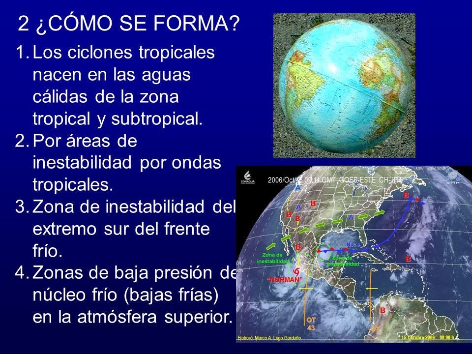 2 ¿CÓMO SE FORMA.1.