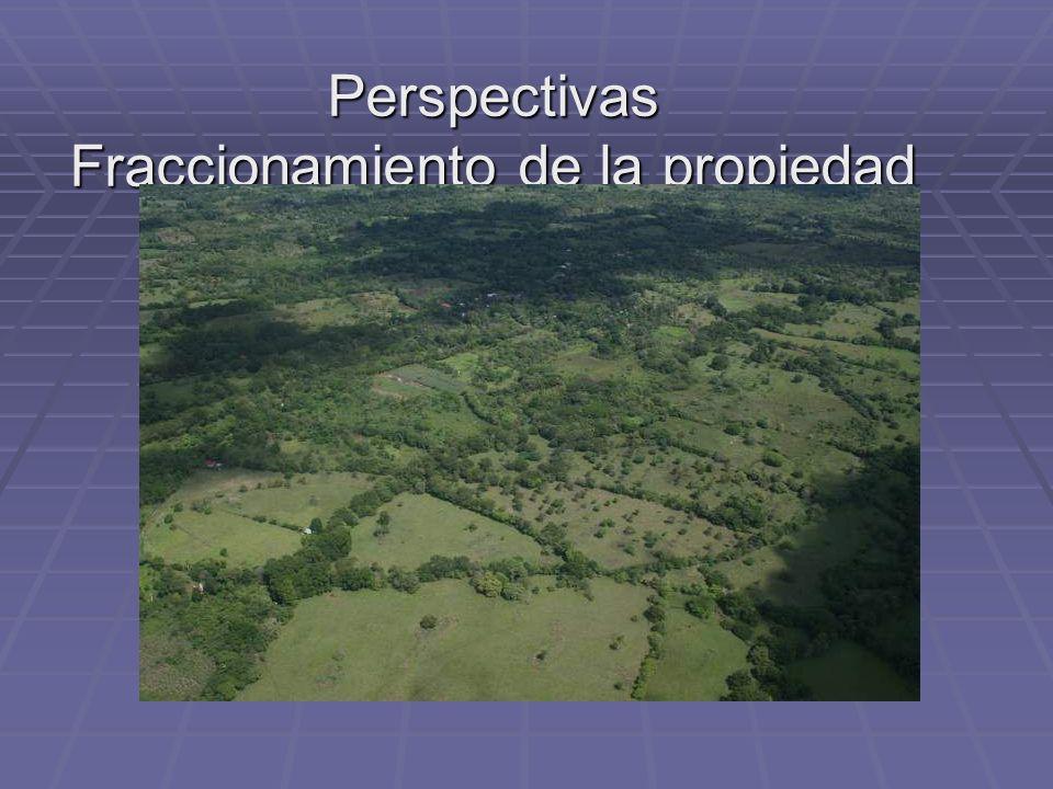 Perspectivas Fraccionamiento de la propiedad