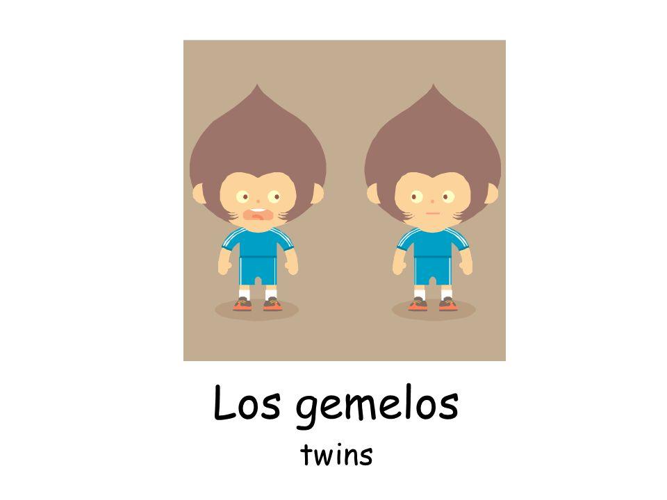Los gemelos twins
