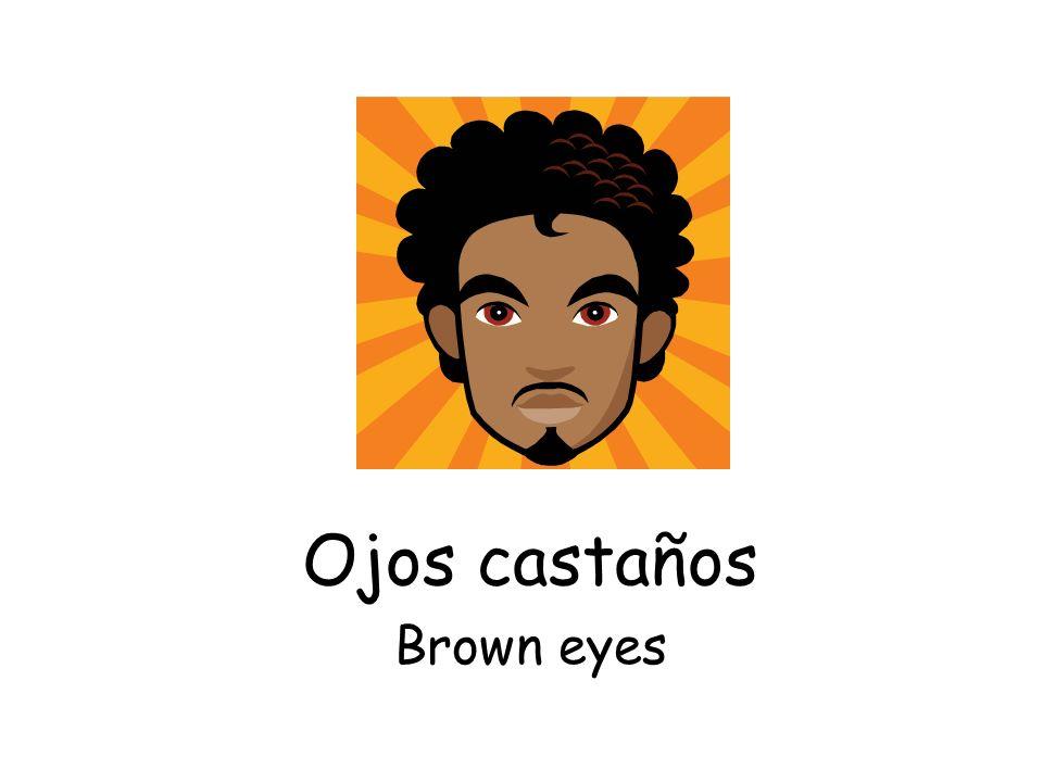 Ojos castaños Brown eyes