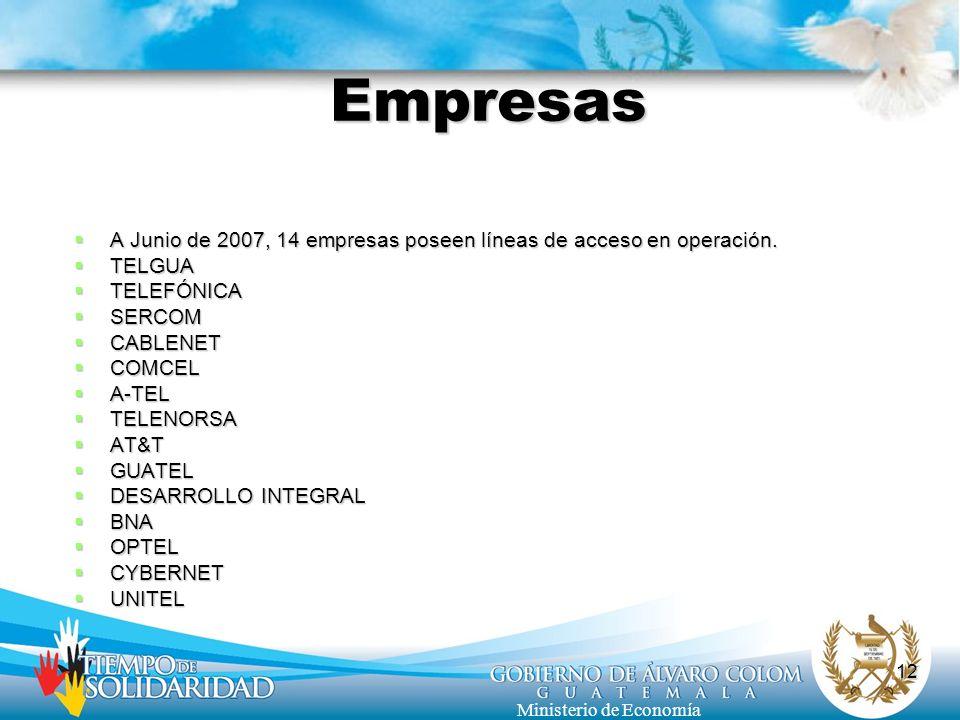 12 Ministerio de Economía Empresas A Junio de 2007, 14 empresas poseen líneas de acceso en operación. A Junio de 2007, 14 empresas poseen líneas de ac