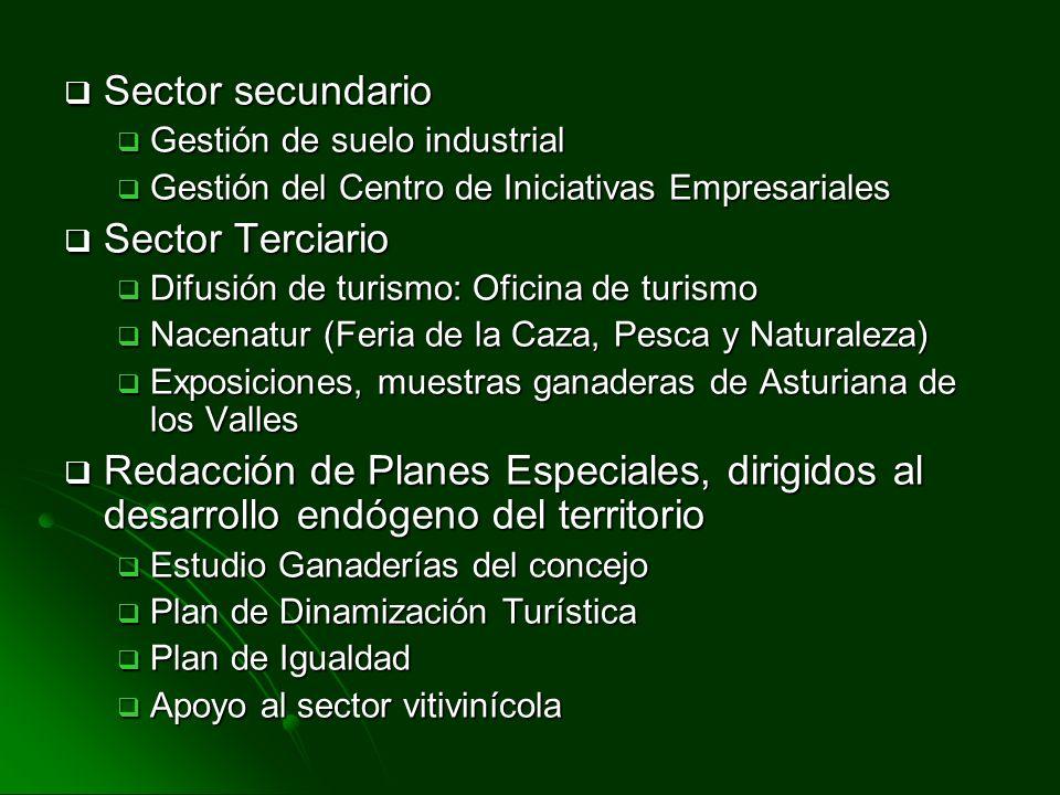 Sector secundario Sector secundario Gestión de suelo industrial Gestión de suelo industrial Gestión del Centro de Iniciativas Empresariales Gestión de