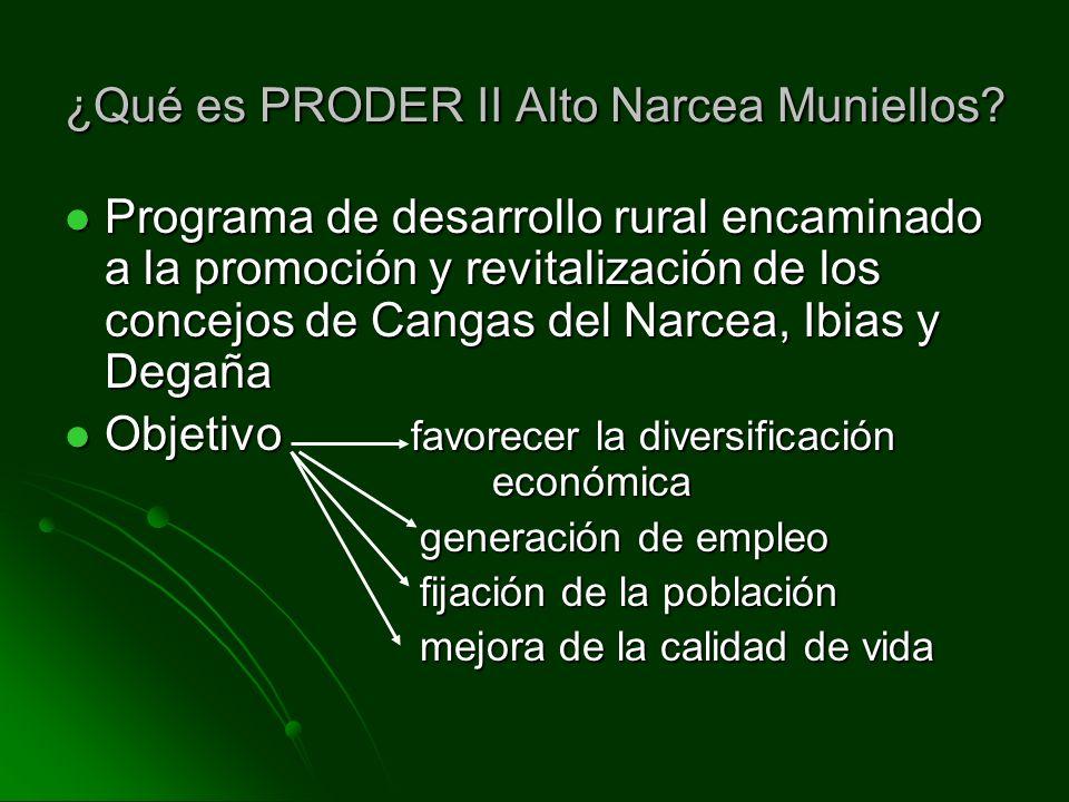 ¿Qué es PRODER II Alto Narcea Muniellos? Programa de desarrollo rural encaminado a la promoción y revitalización de los concejos de Cangas del Narcea,