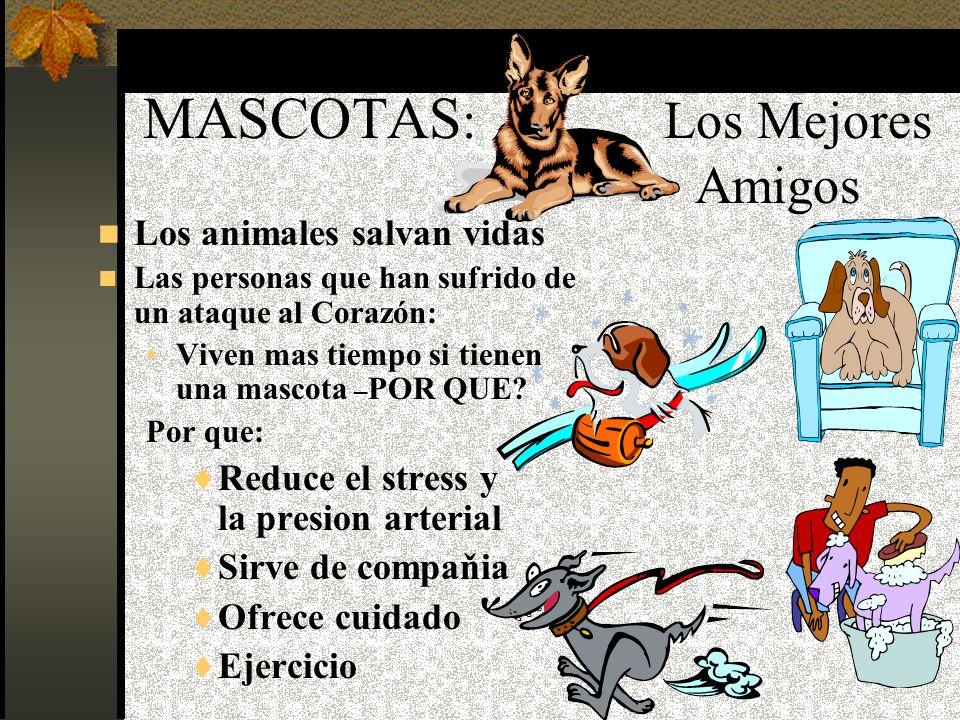 M ÁS ESTUDIOS ACERCA DE ACTIVIDADES SALUDABLES M ascotas T ai Chi T erapia Ocupacional