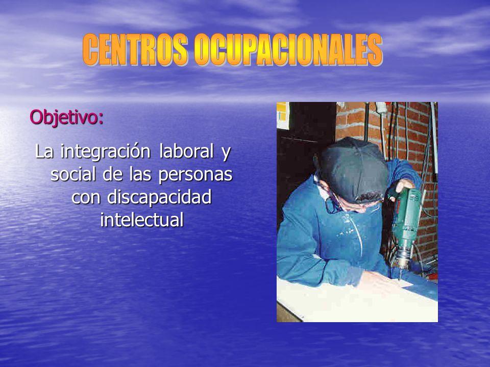 Objetivo: La integración laboral y social de las personas con discapacidad intelectual