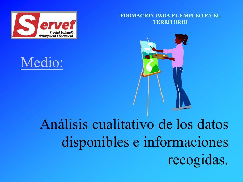 FORMACION PARA EL EMPLEO EN EL TERRITORIO Medio: Análisis cualitativo de los datos disponibles e informaciones recogidas.