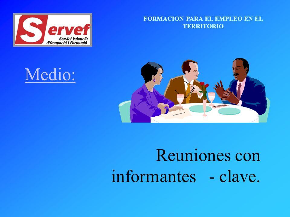 FORMACION PARA EL EMPLEO EN EL TERRITORIO Medio: Reuniones con informantes - clave.
