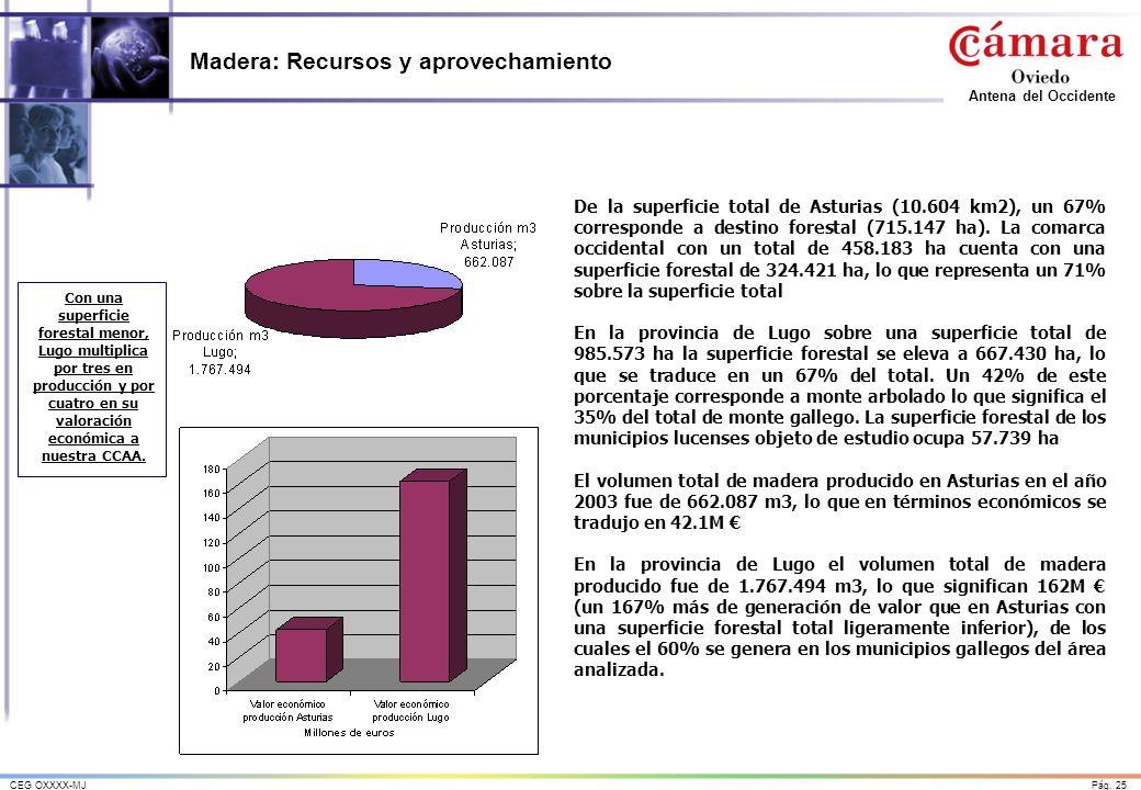 Pág. 25CEG OXXXX-MJ Antena del Occidente Madera: Recursos y aprovechamiento De la superficie total de Asturias (10.604 km2), un 67% corresponde a dest