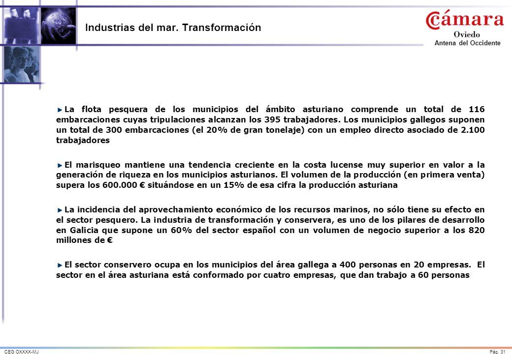 Pág. 31CEG OXXXX-MJ Antena del Occidente Industrias del mar. Transformación La flota pesquera de los municipios del ámbito asturiano comprende un tota