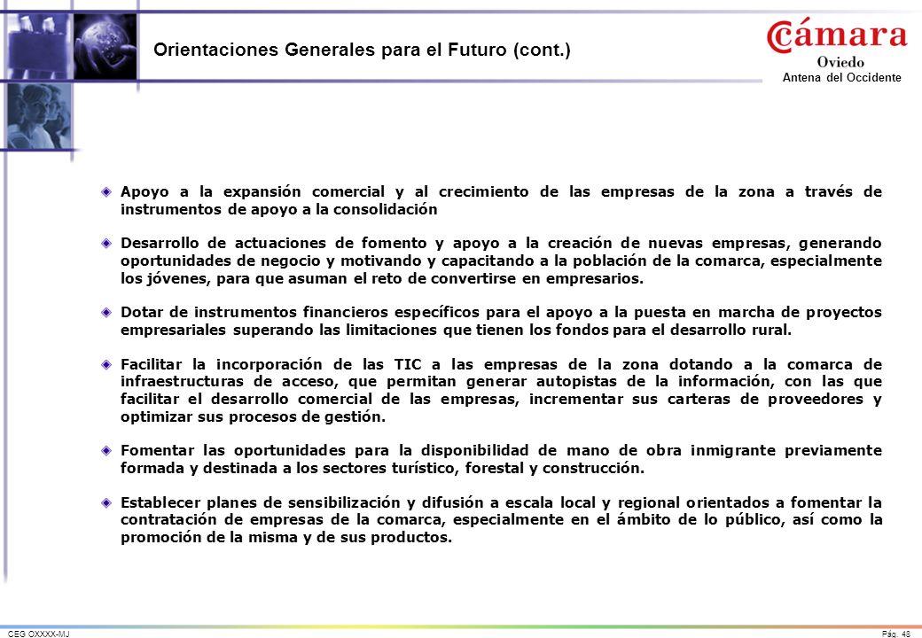 Pág. 48CEG OXXXX-MJ Antena del Occidente Orientaciones Generales para el Futuro (cont.) Apoyo a la expansión comercial y al crecimiento de las empresa