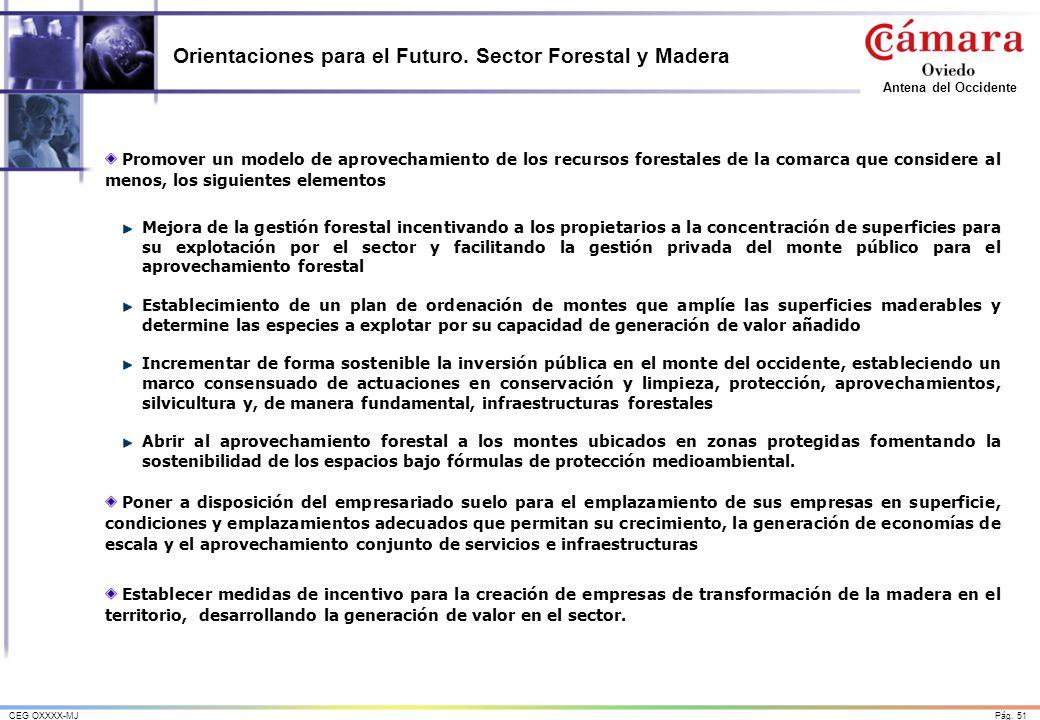 Pág. 51CEG OXXXX-MJ Antena del Occidente Orientaciones para el Futuro. Sector Forestal y Madera Promover un modelo de aprovechamiento de los recursos