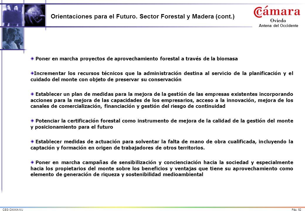 Pág. 52CEG OXXXX-MJ Antena del Occidente Orientaciones para el Futuro. Sector Forestal y Madera (cont.) Poner en marcha proyectos de aprovechamiento f