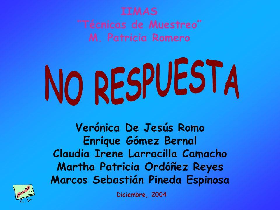 Verónica De Jesús Romo Enrique Gómez Bernal Claudia Irene Larracilla Camacho Martha Patricia Ordóñez Reyes Marcos Sebastián Pineda Espinosa Diciembre,