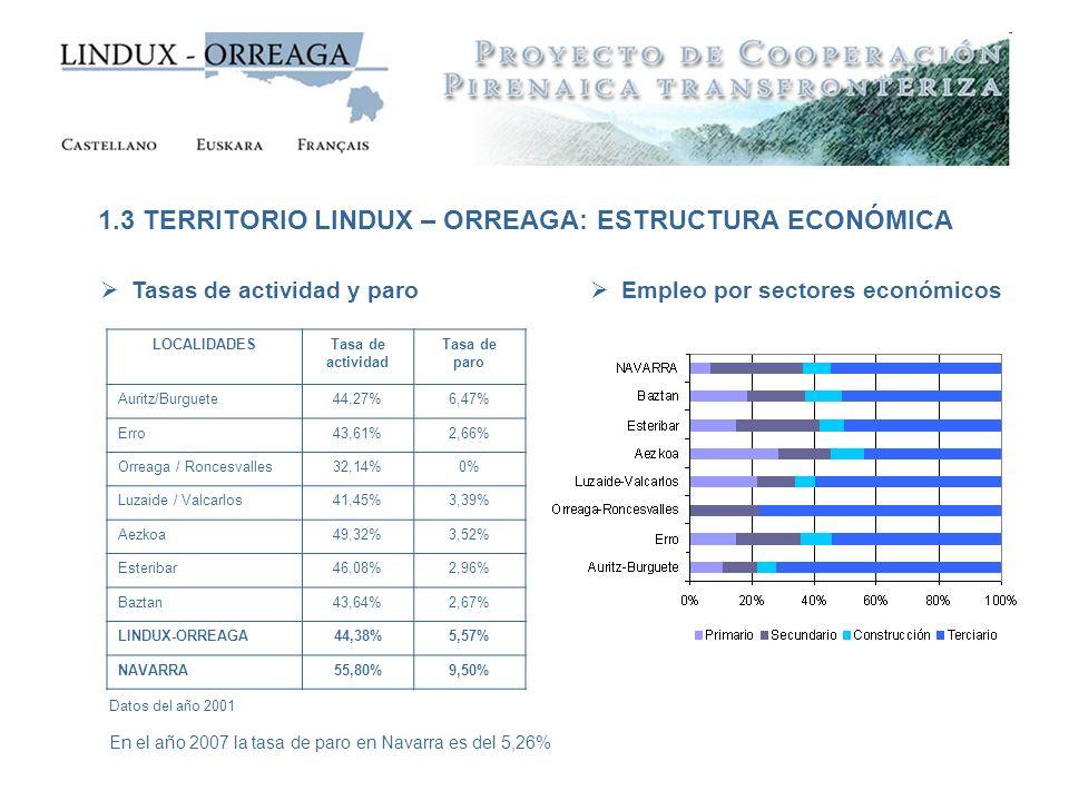 LOCALIDADESTasa de actividad Tasa de paro Auritz/Burguete44,27%6,47% Erro43,61%2,66% Orreaga / Roncesvalles32,14%0% Luzaide / Valcarlos41,45%3,39% Aez