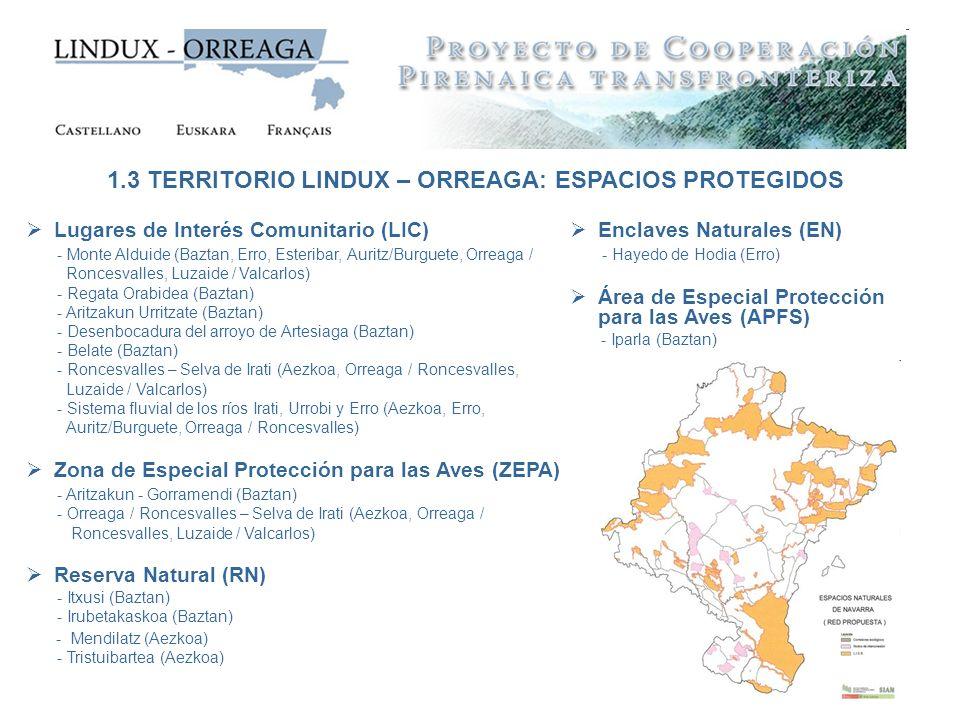 Lugares de Interés Comunitario (LIC) - Monte Alduide (Baztan, Erro, Esteribar, Auritz/Burguete, Orreaga / Roncesvalles, Luzaide / Valcarlos) - Regata