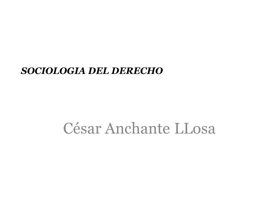 SOCIOLOGIA DEL DERECHO César Anchante LLosa