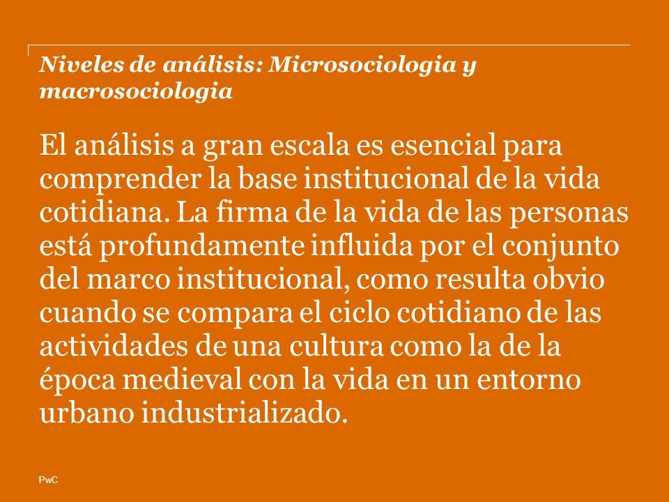 PwC Niveles de análisis: Microsociologia y macrosociologia El análisis a gran escala es esencial para comprender la base institucional de la vida coti