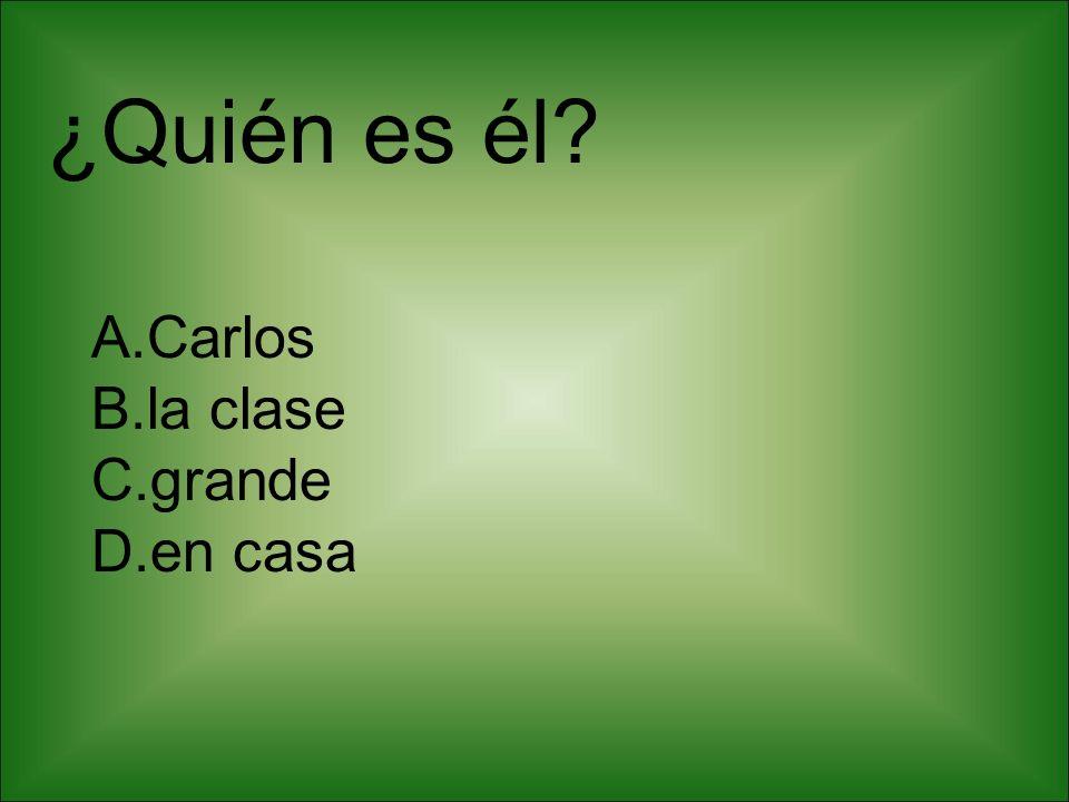¿Quién es él? A.Carlos B.la clase C.grande D.en casa