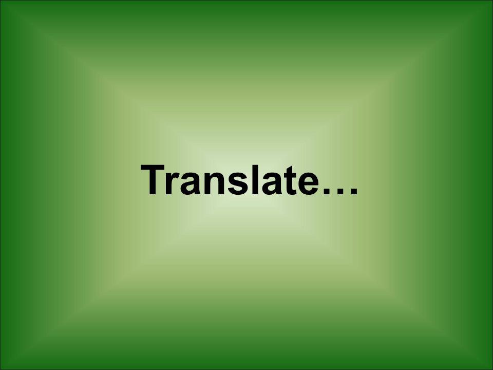 Translate…