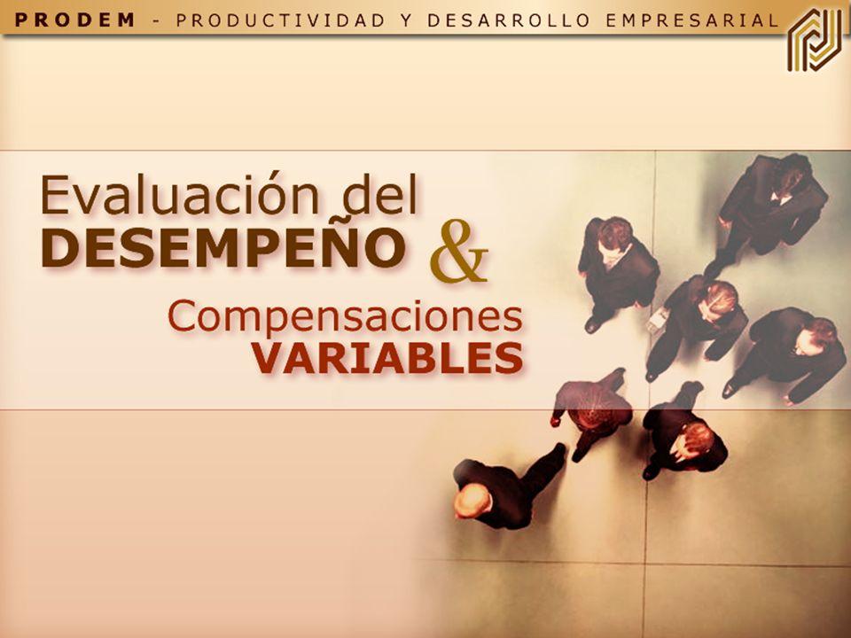 COMBINACIÓN DE CONOCIMIENTOS, HABILIDADES Y COMPORTAMIENTOS QUE SON ESENCIALES PARA EL ÉXITO DE LA EMPRESA Y DEL TRABAJADOR DEFINICION DE COMPETENCIAS (I)