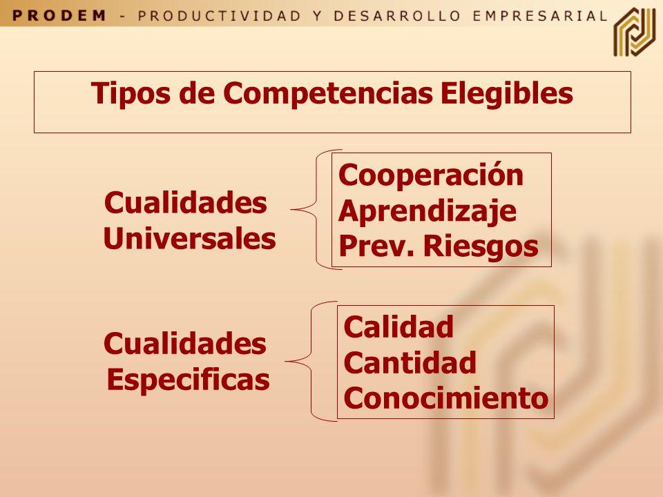 Selección de Nivel Funcional y Características a Evaluar Considerar Objetivos de la Evaluación Considerar el tipo de trabajo que se evaluará. Consider