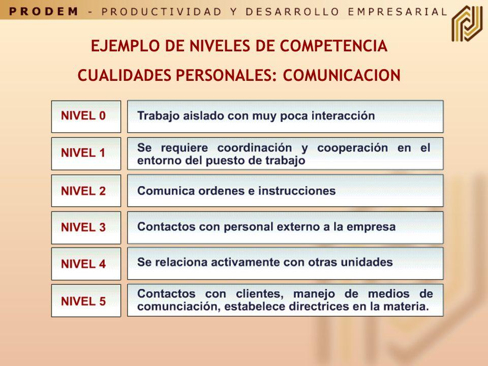 LAS COMPETENCIAS SELECCIONADAS Y ESTANDARIZADAS SE INCORPORAN EN UN DICCIONARIO O CATALOGO DE COMPETENCIAS