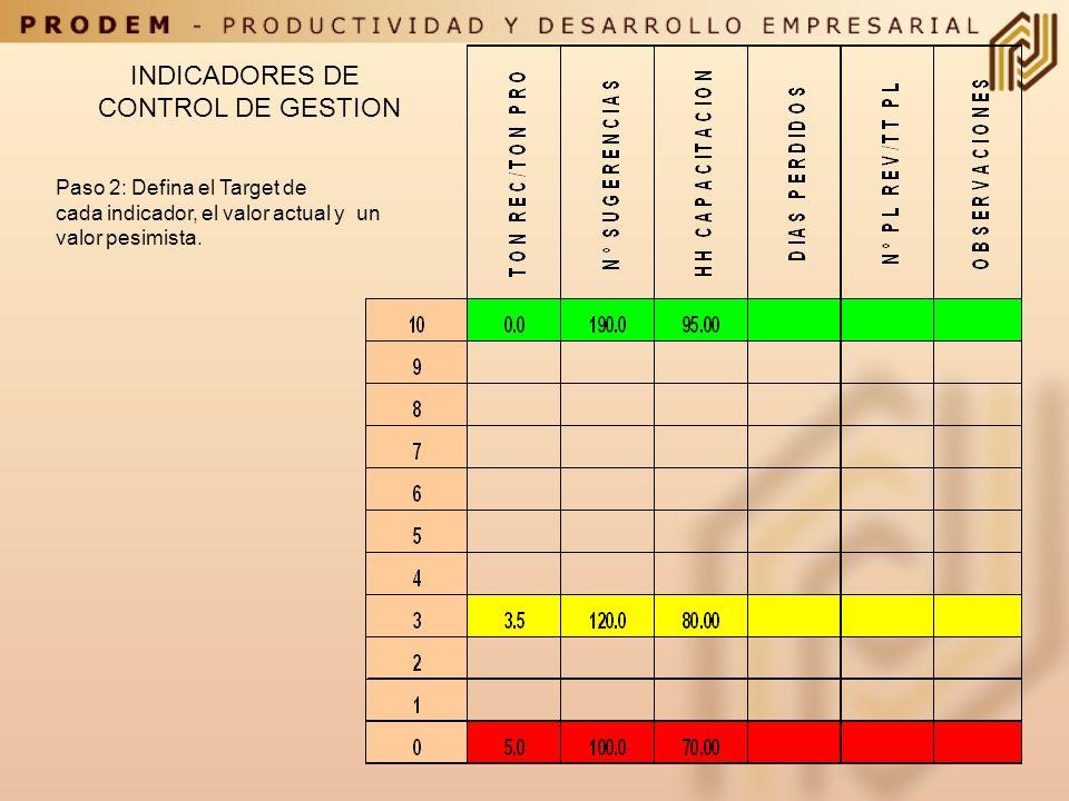 Paso1: Seleccione los indicadores que utilizará para medir desempeño. INDICADORES DE CONTROL DE GESTION