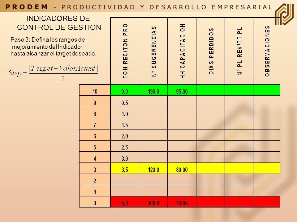 INDICADORES DE CONTROL DE GESTION Paso 2: Defina el Target de cada indicador, el valor actual y un valor pesimista.