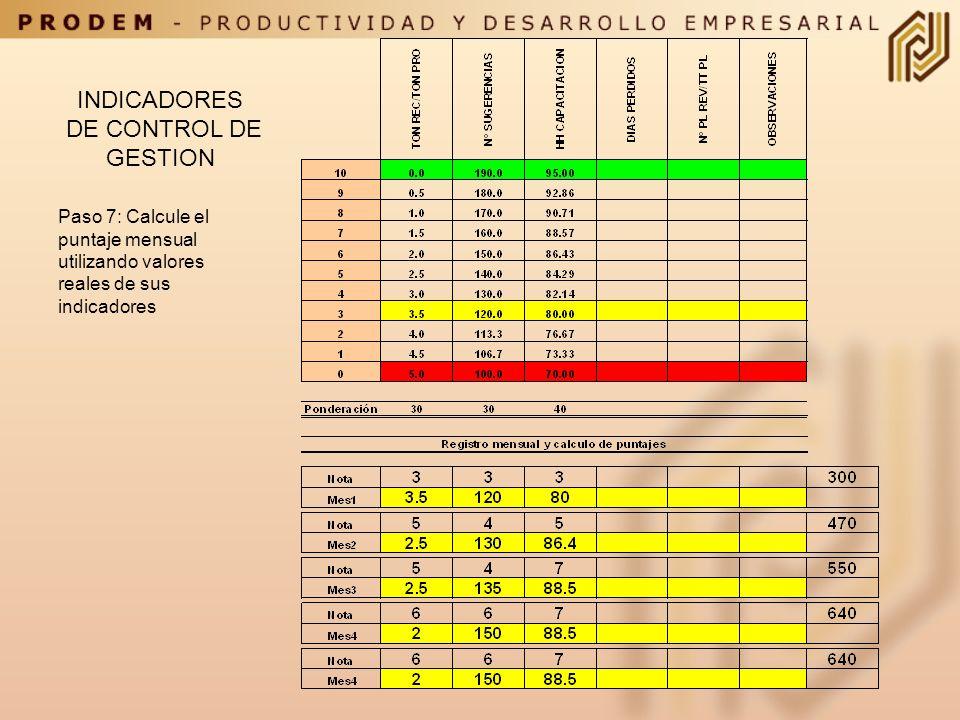 INDICADORES DE CONTROL DE GESTION Paso 6: Considere que peso le asignará a cada indicador ( suma 100)