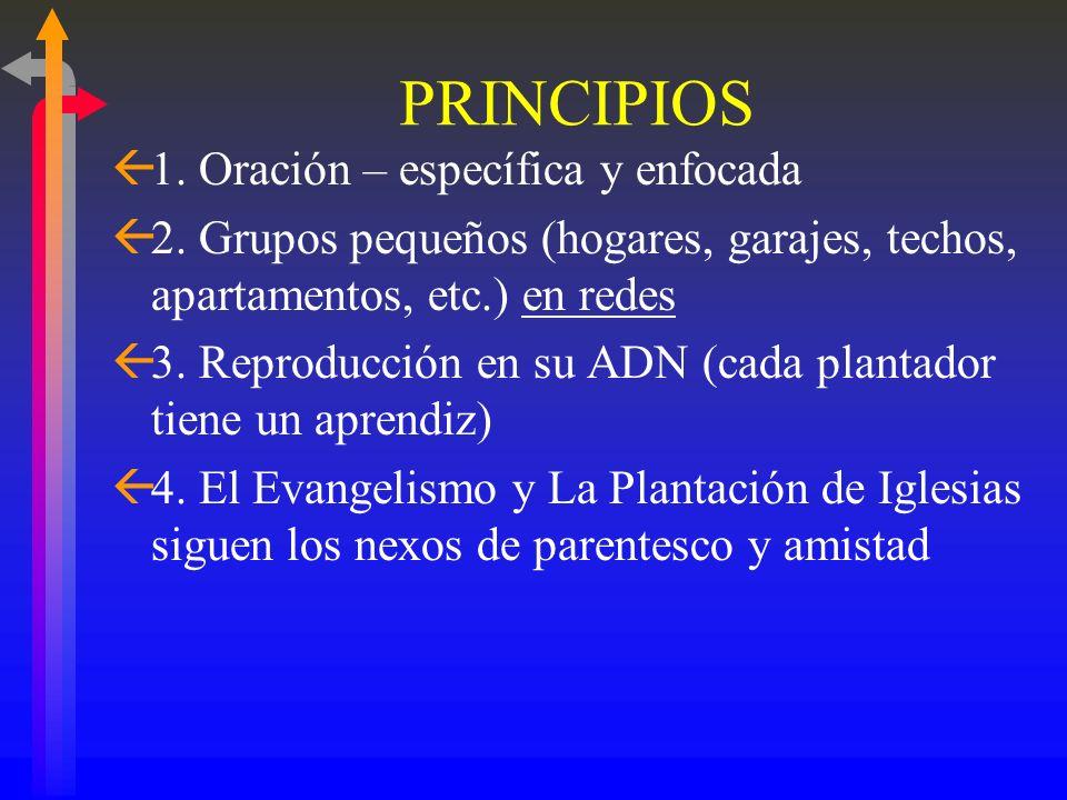 Tipo 3.2: Iglesia en Casa. Modelo multiplicador. Red Bajo la Sombrilla de una Iglesia Constituida en una Casa Casas Adoración Evangelismo Discipulado