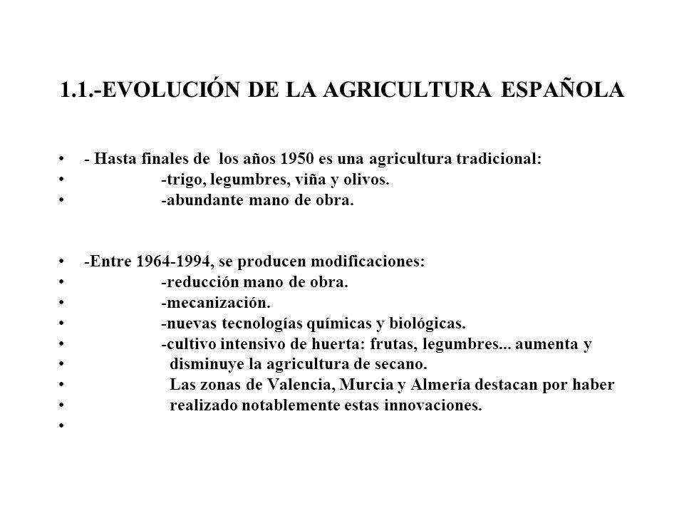 1.1.-EVOLUCIÓN DE LA AGRICULTURA ESPAÑOLA - Hasta finales de los años 1950 es una agricultura tradicional: -trigo, legumbres, viña y olivos. -abundant