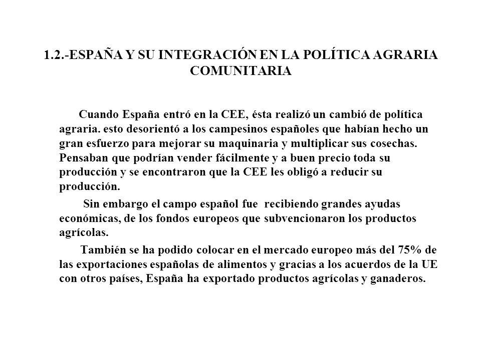 1.2.-ESPAÑA Y SU INTEGRACIÓN EN LA POLÍTICA AGRARIA COMUNITARIA Cuando España entró en la CEE, ésta realizó un cambió de política agraria. esto desori