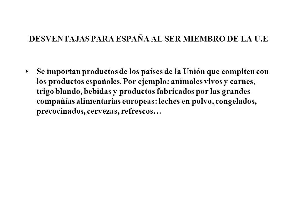 DESVENTAJAS PARA ESPAÑA AL SER MIEMBRO DE LA U.E Se importan productos de los países de la Unión que compiten con los productos españoles. Por ejemplo