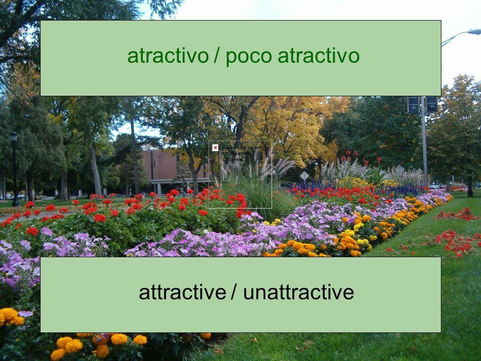 atractivo / poco atractivo