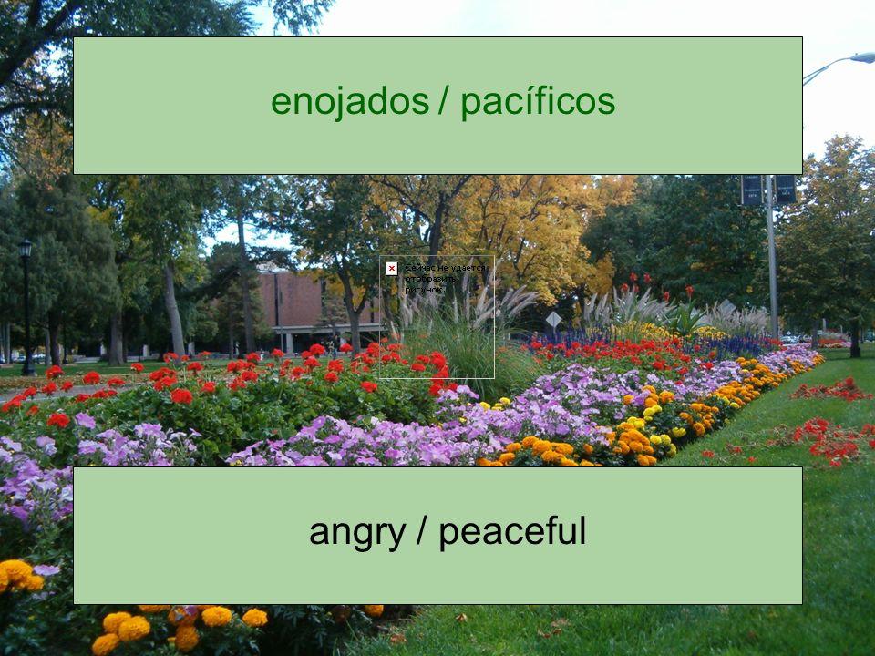 enojados / pacíficos