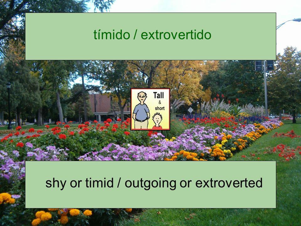 tímido / extrovertido
