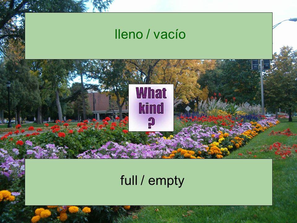 lleno / vacío