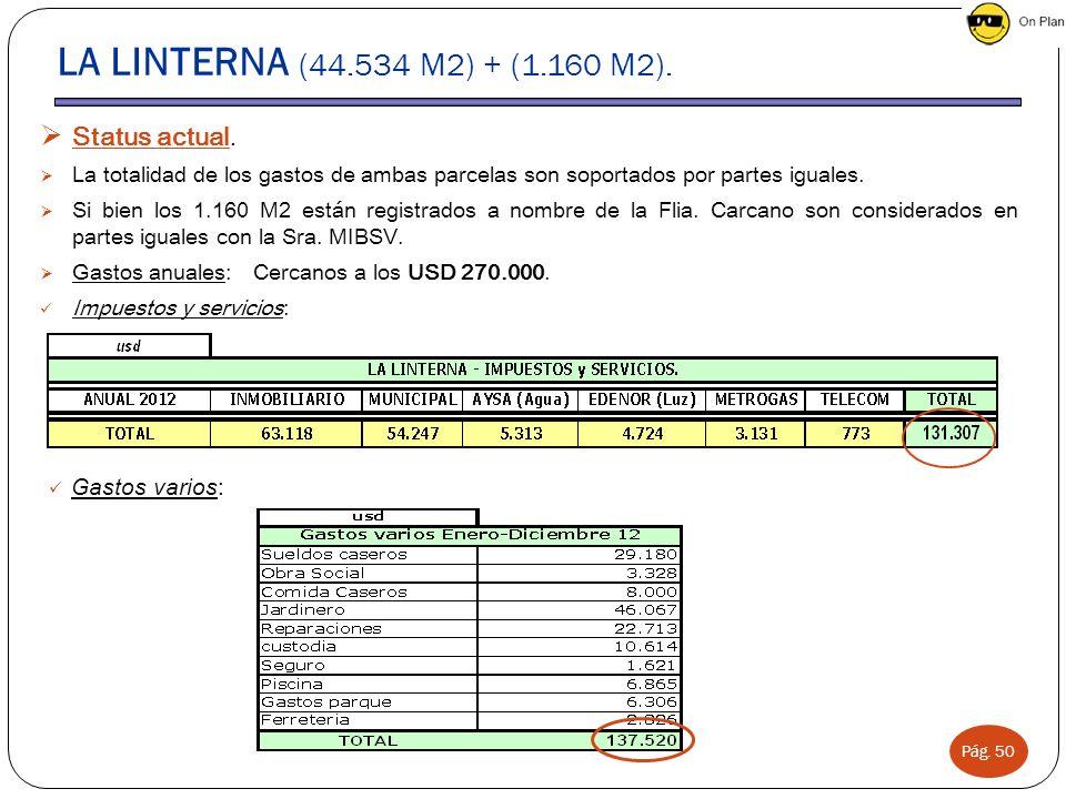 Pág. 50 LA LINTERNA (44.534 M2) + (1.160 M2). Status actual. La totalidad de los gastos de ambas parcelas son soportados por partes iguales. Si bien l