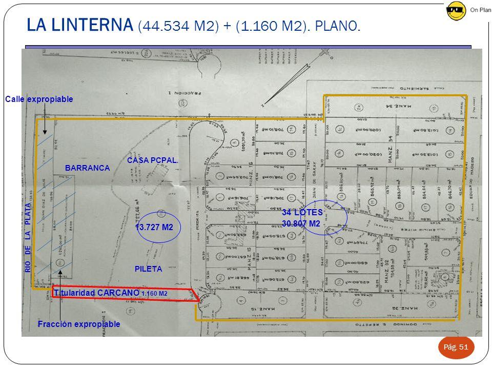 Pág. 51 LA LINTERNA (44.534 M2) + (1.160 M2). PLANO. BARRANCA CASA PCPAL. PILETA RIO DE LA PLATA Calle expropiable Titularidad CARCANO 1.160 M2 13.727