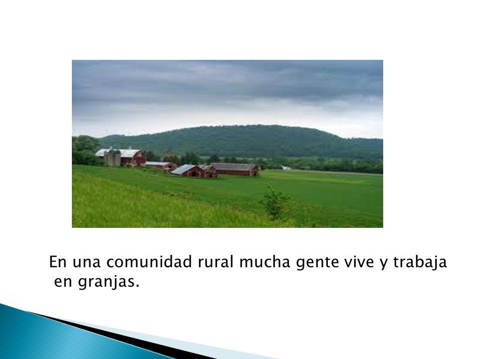 En una comunidad rural mucha gente vive y trabaja en granjas.
