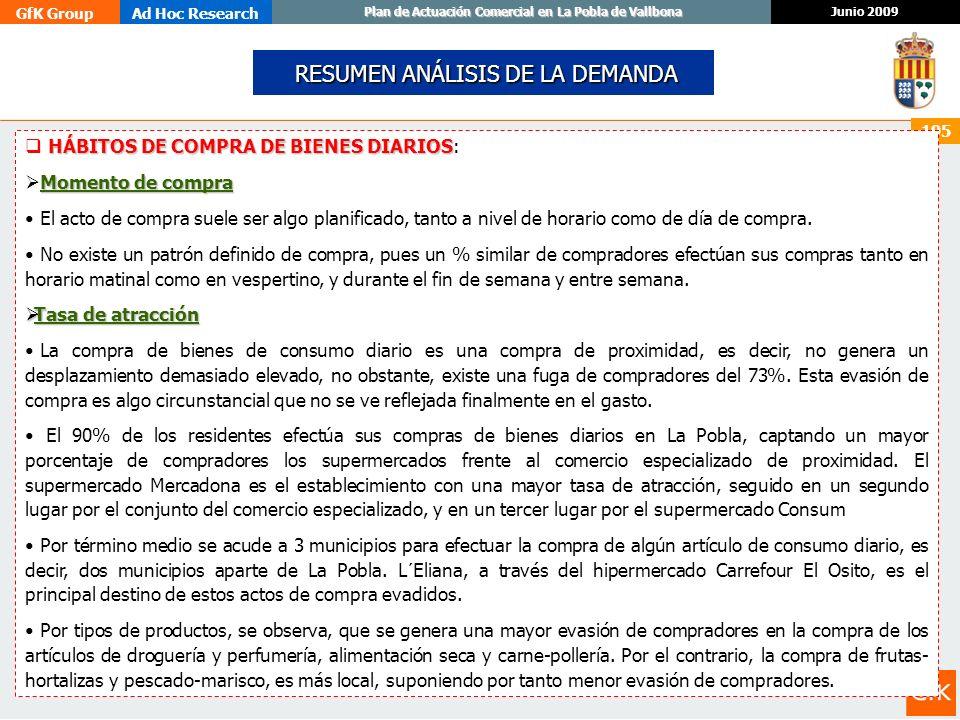 GfK GroupAd Hoc Research Junio 2009 Plan de Actuación Comercial en La Pobla de Vallbona 195 RESUMEN ANÁLISIS DE LA DEMANDA RESUMEN ANÁLISIS DE LA DEMA