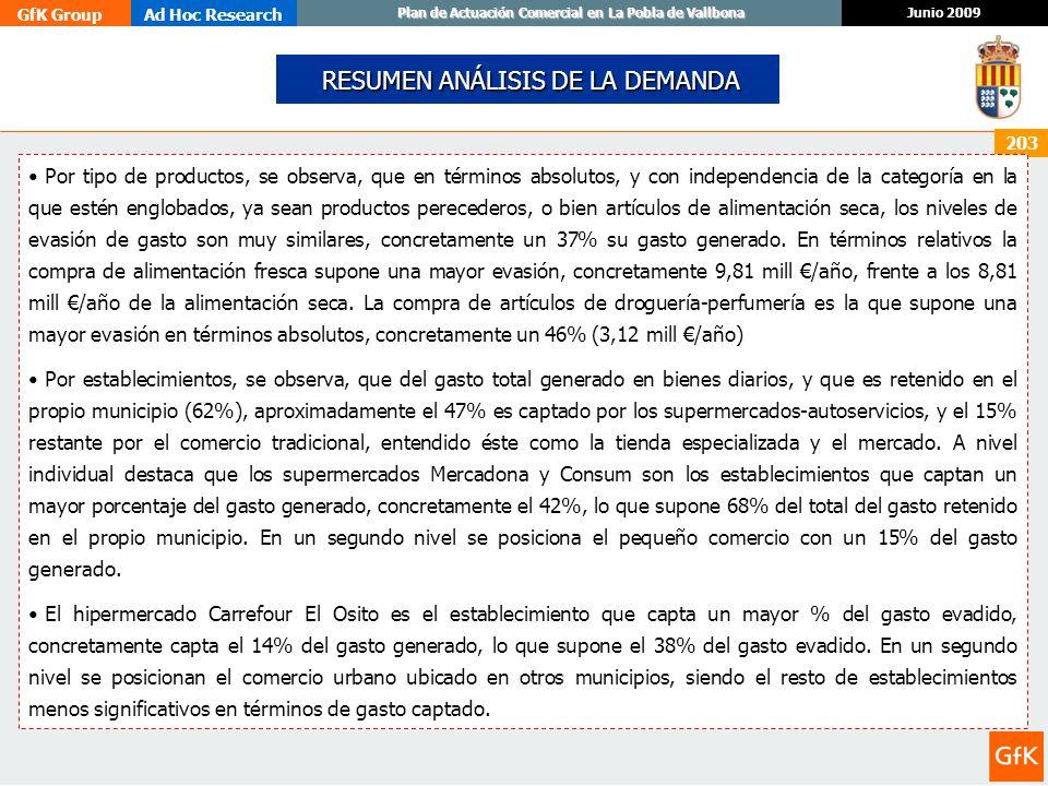 GfK GroupAd Hoc Research Junio 2009 Plan de Actuación Comercial en La Pobla de Vallbona 203 RESUMEN ANÁLISIS DE LA DEMANDA RESUMEN ANÁLISIS DE LA DEMA