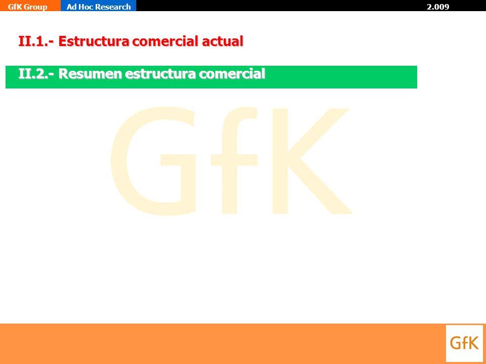 GfK GroupAd Hoc Research 2.009 II.1.- Estructura comercial actual II.2.- Resumen estructura comercial