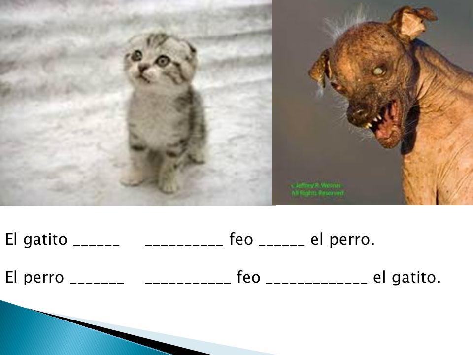 El gatito ______ __________ feo ______ el perro.