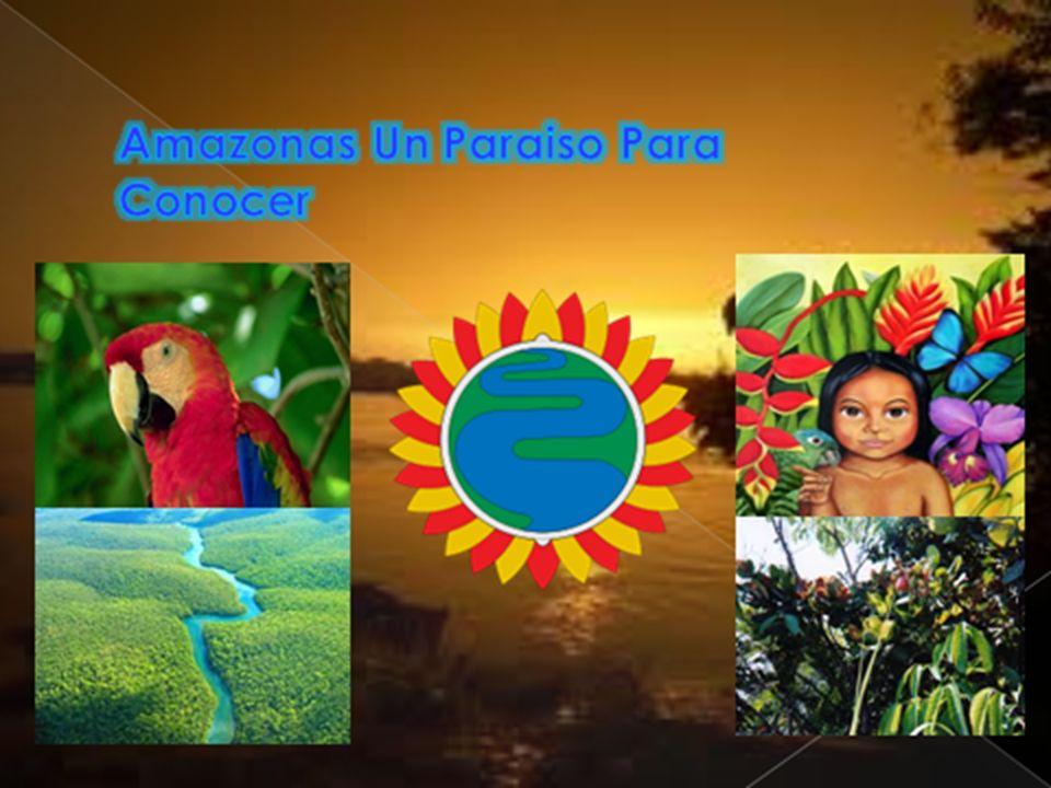 PARQUE NATURAL NACIONAL CAHUINARÍ